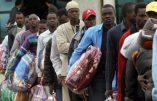 Italie – Révolte de clandestins africains, le personnel se barricade dans les bureaux du centre d'accueil