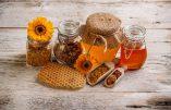 Bienfaits pour la santé des produits de la ruche (professeur Henri Joyeux)