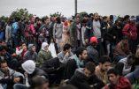Stop aux migrants, trop de violences