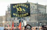 Vidéo du chaos organisé par les migrants avant les agressions sexuelles massives à Cologne le 31 décembre au soir