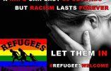 """""""Le viol dure 30 secondes et le racisme pour la vie"""" selon une nouvelle campagne immigrationniste"""