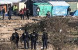 """Combien d'immigrés armés à Calais ? Encore un blessé par balle dans la """"Jungle""""…"""