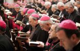 """La Conférence des évêques italiens : """"Accueillir tous les migrants"""""""