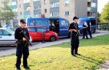 """Danemark – Un """"soldat du califat"""" blesse deux policiers avant d'être abattu"""