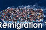Catholicisme et remigration au programme de Civitas (Alain Escada)