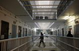 Libérés au nom du coronavirus, 130 détenus islamistes condamnés dans des dossiers de terrorisme