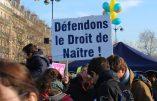 Reportage photos à la Marche pour la Vie 2017
