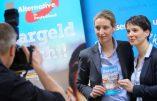 Allemagne – Une lesbienne formée chez Goldman Sachs prend la tête de l'AfD !
