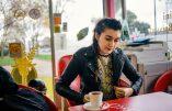 Une jeune femme rom, ex-immigrée clandestine va-t-elle devenir sénatrice en France ? Intense lobbying en cours…