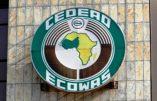 Vers une monnaie unique en Afrique de l'Ouest en 2020 ?
