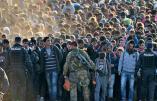 Immigration – La vidéo officielle du gouvernement polonais