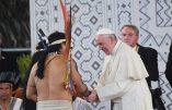 Synode sur l'Amazonie: les mythes bergogliens sur l'Amazonie démystifiés