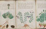 Et le Voynich a tenu le «génie juif» en échec…