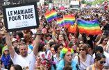 ©PHOTOPQR/LE PARISIEN/DELPHINE GOLDSZTEJN PARIS LE 30 06 2012  ; LA MARCHE DES FIERTES LESBIENNES, GAYS, BI ET TRANS (LGBT) A PARIS