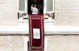 Le pape François à la tête du front immigrationniste