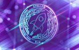 Certifiée halal, la cryptomonnaie de Stellar s'envole