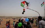«Cerfs-volants» et ballonsde Gaza…