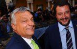 Axe anti-immigration Rome-Budapest: «ensemble nous fermerons les débarquements»