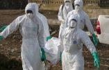 Au Congo, 117 morts de fièvre hémorragique d'Ebola
