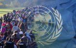 Pour protéger sa souveraineté, l'Autriche se retire du pacte de l'ONU sur les migrations