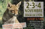 2-3-4 novembre : stage découverte de la nature