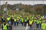 Le Parlement européen se soucie des 800 arrestations au Soudan, mais pas des 5000 gilets jaunes français placés en garde-à-vue !