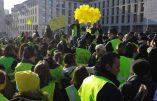 """Acte VII à Marseille – L'équipe de BFMTV chassée par les Gilets Jaunes au cri de """"menteurs"""""""