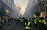 Avignon – Gilets Jaunes gazés