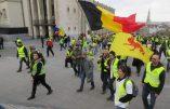 Belgique – Gilets jaunes et œil bleu !