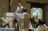 Pétition pour la réouverture des églises et le droit d'assister à la sainte Messe