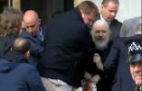 """Wikileaks : Julien Assange hospitalisé en prison, """"sa santé se détériore"""""""
