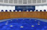 GPA : la Cour européenne des droits de l'homme impose l'obligation de reconnaître une filiation avec la mère d'intention