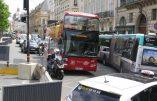 Paris – Un chauffeur de bus touristique écrase un homme après une altercation