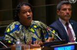 La priorité de l'ONU pour les femmes? Le«gender»