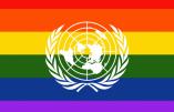 Marion Sigaut démontre comment l'ONU œuvre contre l'enfance et la famille