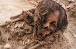 Sacrifices rituels d'enfants au Pérou : des archéologues découvrent des centaines de squelettes