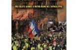La France en flammes, des gilets jaunes à Notre-Dame (Jean-Michel Vernochet)
