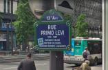 Syntaxe sioniste à propos de Primo Levi