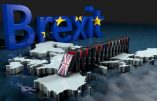 Brexit, or not Brexit ?