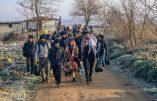 La Turquie met à disposition des bus pour emmener les migrants à la frontière avec la Grèce