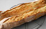 Recette vidéo – Faire soi-même sa baguette de pain