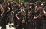 USA – Des milices de Noirs armés de fusils d'assaut défilent dans les rues