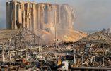 Explosions à Beyrouth : le mondialisme sauvage au banc des accusés