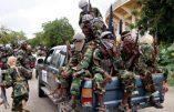 Mozambique – Les djihadistes se sont emparés du port de Mocimboa da Praia, important enjeu gazier pour Total