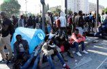 Thibault de Montbrial, avocat, les chiffres vertigineux de la criminalité liée à l'immigration