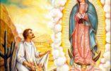 Samedi 12 décembre 2020 – De la férie – Notre-Dame de Guadalupe, Patronne de l'Amérique Latine – Sainte Adélaïde, Impératrice