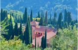 L'abbaye de Castagniers, entourée de beaux cyprès, se situe en Provence - © Divine Box