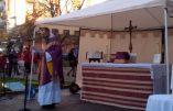 La résistance des catholiques du Languedoc face à la tyrannie
