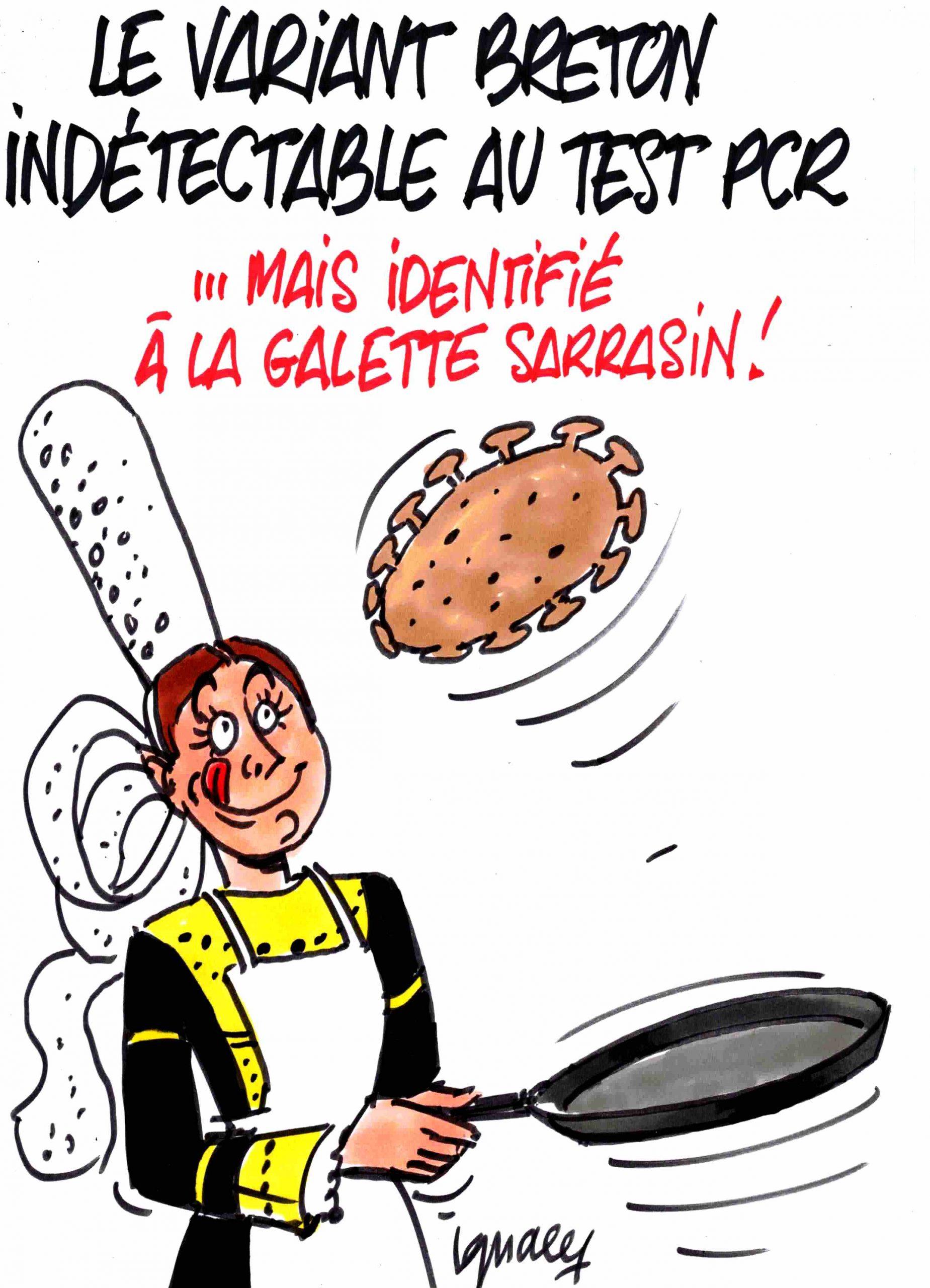 Ignace - Le variant breton indétectable au test PCR
