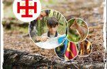 Camp nature du 26 au 31 juillet pour garçons de 8 à 11 ans près de Cholet (49)